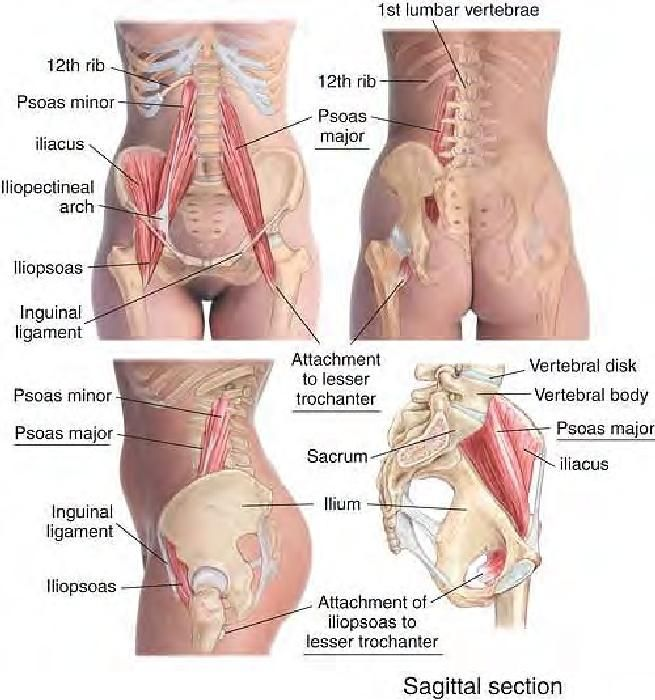 Fitness Inspiration Relieve Low Back Pain By Getting A Therapeutic